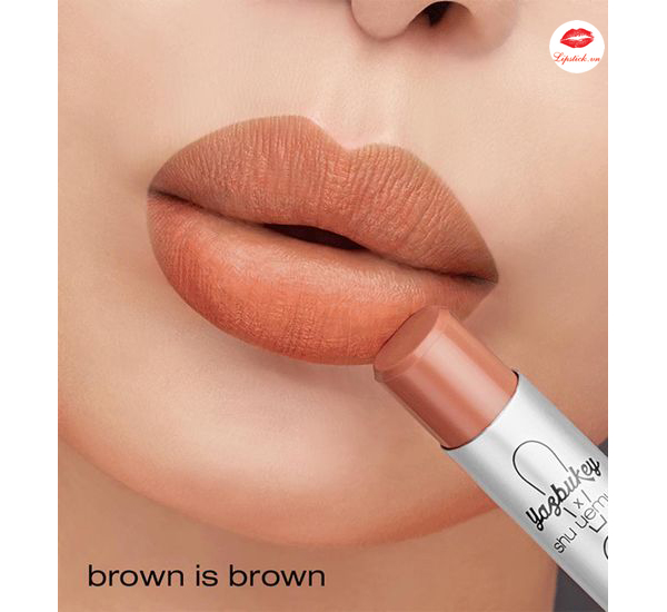 swatch-Son-Shu-Uemura-Brown-is-Brown